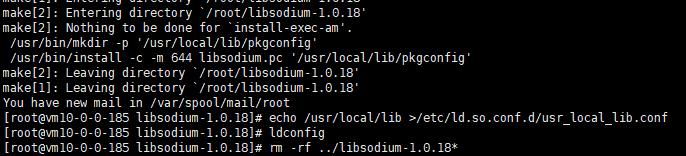 安装libsodium